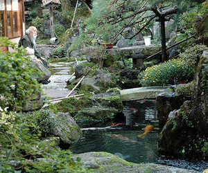 japan, japanese garden, and kyoto image