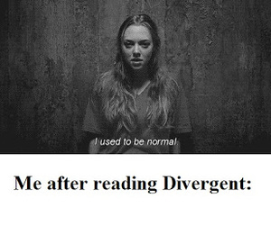 divergent, book, and funny image
