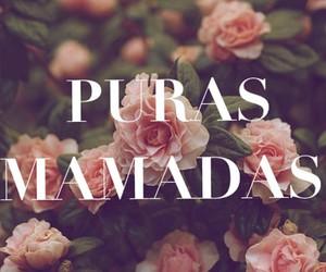 art, mamadas, and pendejadas image