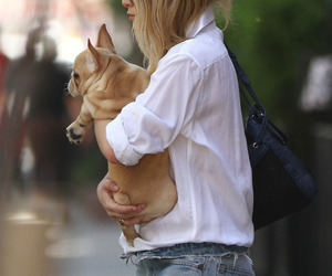 ashley olsen, cute, and dog image