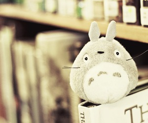 totoro, cute, and book image