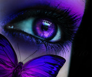 butterfly, purple, and eye image