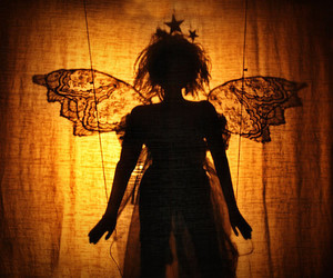 fairy, shadow, and wings image