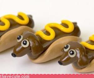 hot dog, mustard, and dogs image