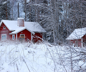 derelict, house, and finland image