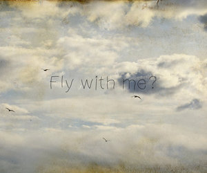 fly, photography, and sky image