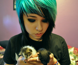 alicia, cats, and blue hair image