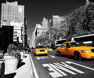 cabs, colors, and new york image