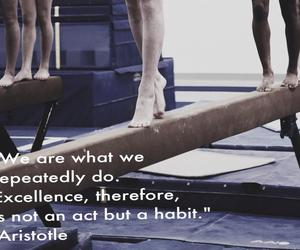 gymnastics, aristotle, and gymnastic quotes image
