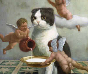cat, angel, and art image