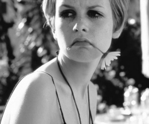 twiggy, flower, and 60s image