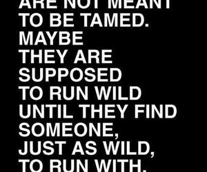 quotes, girl, and wild image