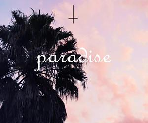 paradise and pink image