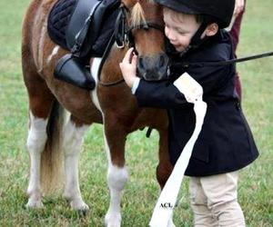 pony, horse, and cute image