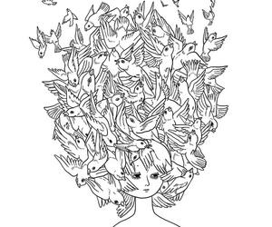 birds and illustration image