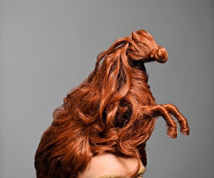 horse and hair image