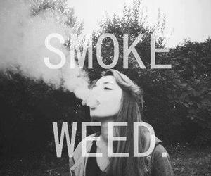 weed and smoke image