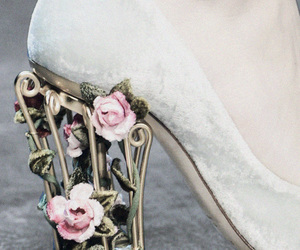 beauty, Dolce & Gabbana, and heel image