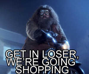 harry potter, mean girls, and hagrid image