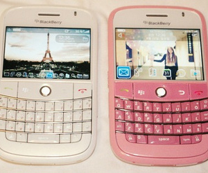 blackberry, pink, and white image