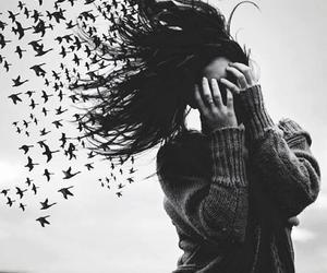 girl, bird, and hair image