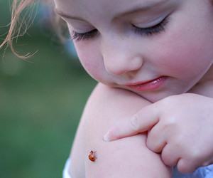 child, ladybug, and baby image