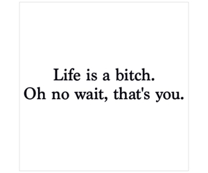 bitch, life, and quote image