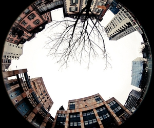 buildings, city, and fisheye image