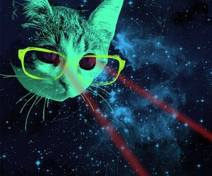 cat, space, and hipster image