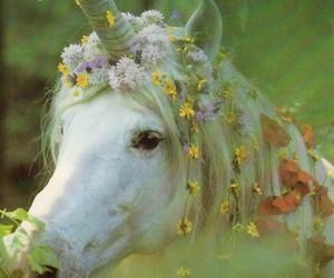 unicorn, flowers, and horse image
