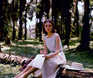audrey hepburn, vintage, and forest image