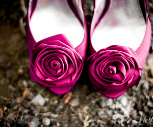 shoes, blue, and rose image