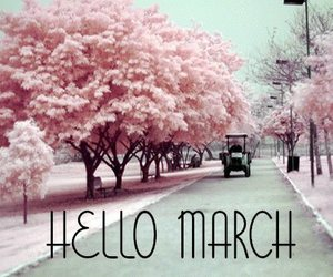 cherry tree, hello, and march image