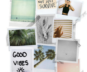 beach, surfer, and cool image