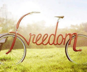 freedom, bike, and bicycle image