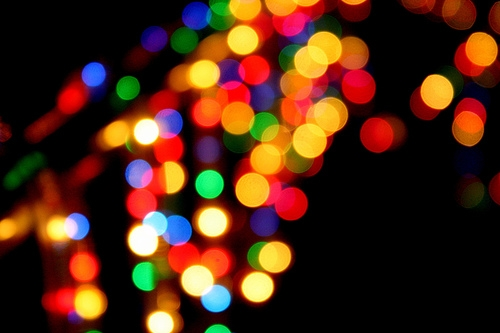 blur, blurry, and bokeh image