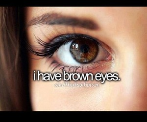 brown, eyes, and brown eyes image
