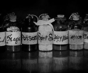 magic, poison, and blood image