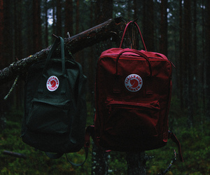 backpack, forest, and green image