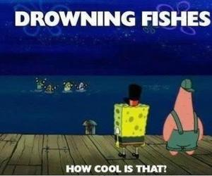 fish, spongebob, and funny image