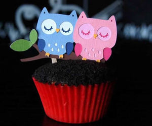 dubtrackfm, cupcake, and owl image