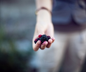 fruit, berries, and hand image