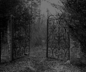 black and white and gate image