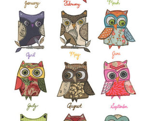 owl, cute, and months image