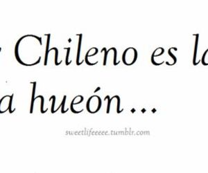 chile, funny, and chilenos image