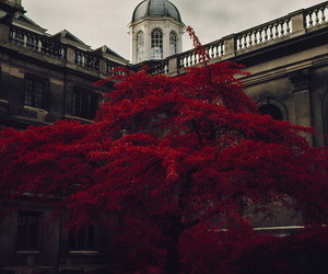 beautiful, red, and england image