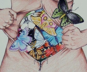 butterfly, human, and love image
