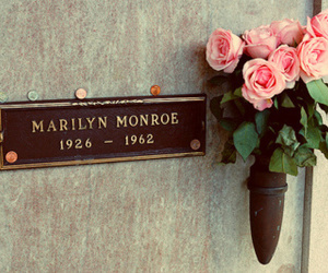 Marilyn Monroe, flowers, and rose image