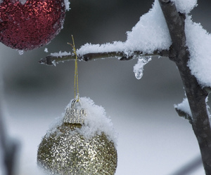 photography, snow, and cute image