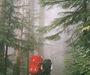 adventure, wilderness, and love image
